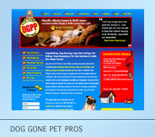 Dog Gone Pet Pros